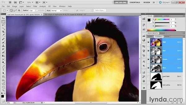 Welcome: Photoshop Masking and Compositing: Fundamentals