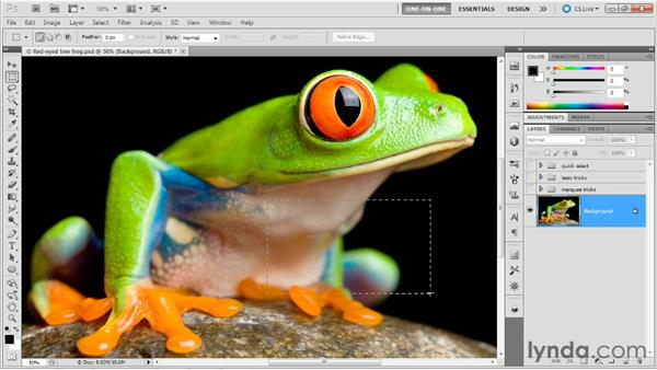 The marquee tools: Photoshop Masking and Compositing: Fundamentals