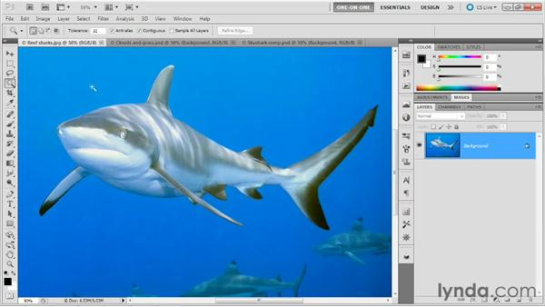 A terrific use for Color Range: Photoshop Masking and Compositing: Fundamentals