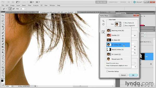 Mask, composite, refine, and blend: Photoshop Masking and Compositing: Fundamentals
