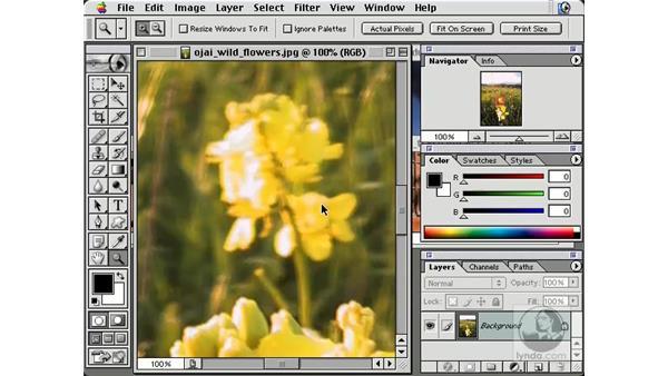 organizing documents: New in Photoshop 7