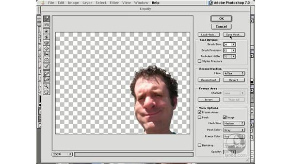 load and save mesh: New in Photoshop 7