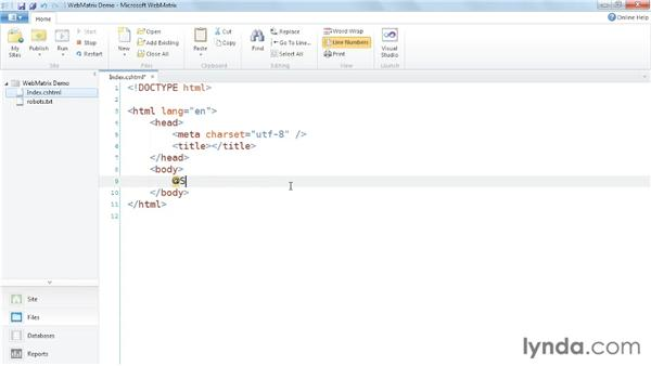 Inspecting the server environment with ServerInfo: Up and Running with WebMatrix and ASP.NET