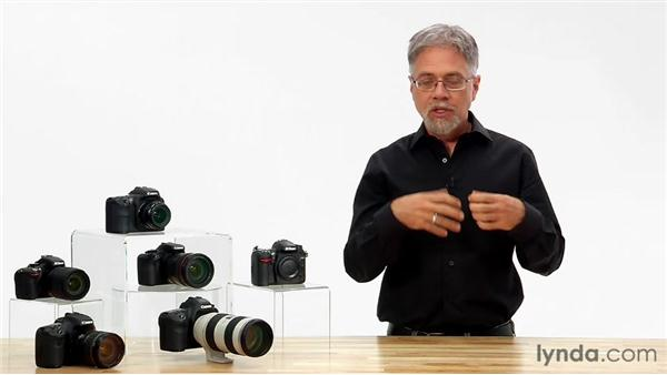 Powering up: Shooting with the Nikon D5100