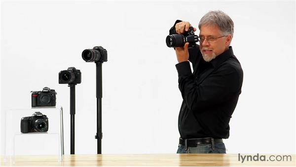 Holding the camera: Shooting with the Nikon D5100