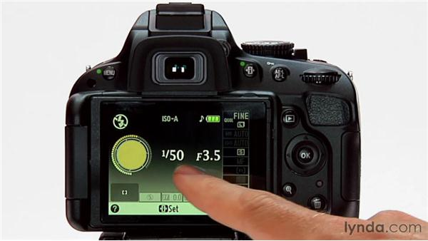 The LCD screen: Shooting with the Nikon D5100