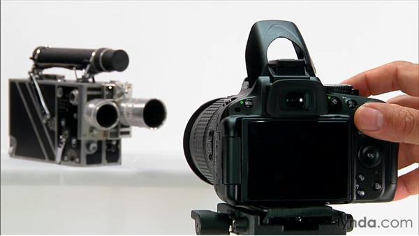 Autofocus basics: Shooting with the Nikon D5100