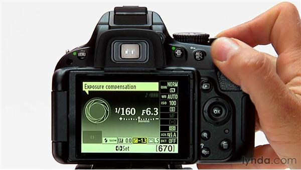 Exposure compensation: Shooting with the Nikon D5100