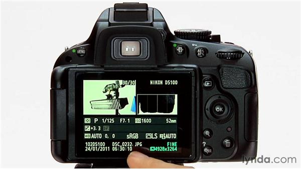 Metadata display: Shooting with the Nikon D5100
