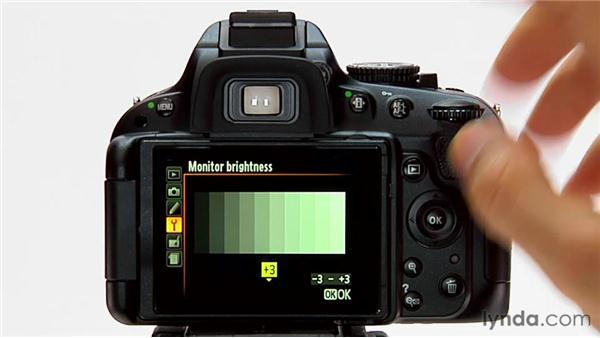 Monitor brightness: Shooting with the Nikon D5100