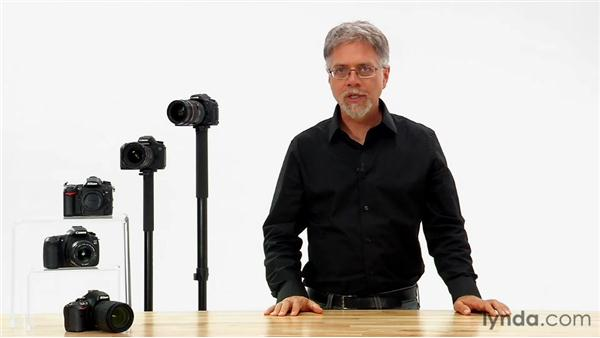 Picture controls defined: Shooting with the Nikon D5100