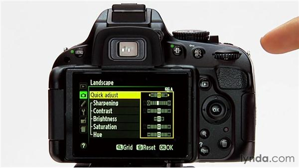 Modifying a picture control: Shooting with the Nikon D5100