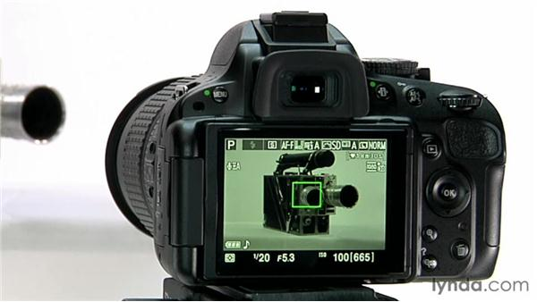 Focusing and menu options: Shooting with the Nikon D5100