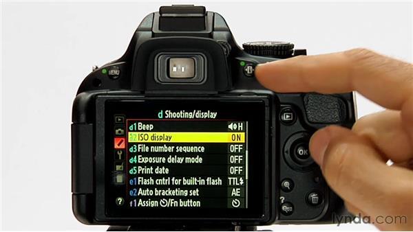 ISO display and adjustment: Shooting with the Nikon D5100