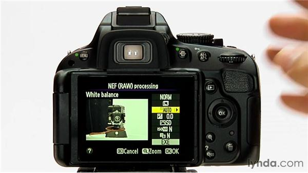 NEF (RAW) processing: Shooting with the Nikon D5100
