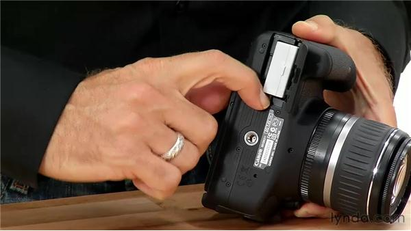 Batteries and media cards: Shooting with the Canon Rebel T3i (600D and Kiss X5)