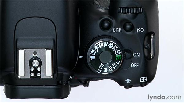 Setting Auto mode: Shooting with the Canon Rebel T3i (600D and Kiss X5)