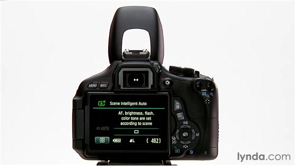 Flash in Auto mode: Shooting with the Canon Rebel T3i (600D and Kiss X5)