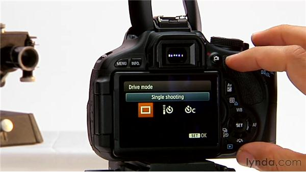 Image review: Shooting with the Canon Rebel T3i (600D and Kiss X5)