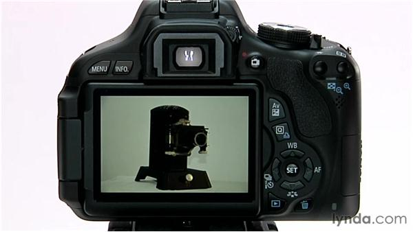 Image playback: Shooting with the Canon Rebel T3i (600D and Kiss X5)