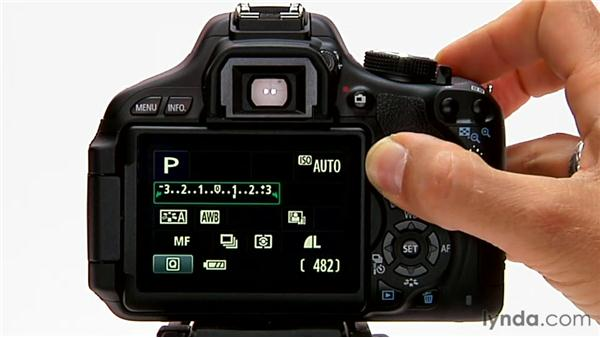 Exposure compensation: Shooting with the Canon Rebel T3i (600D and Kiss X5)