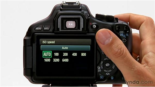 Changing ISO: Shooting with the Canon Rebel T3i (600D and Kiss X5)