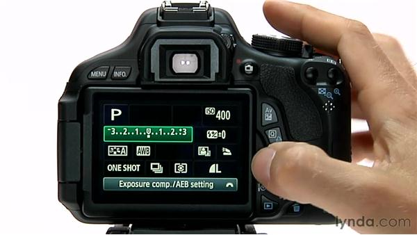 The Quick Control button: Shooting with the Canon Rebel T3i (600D and Kiss X5)