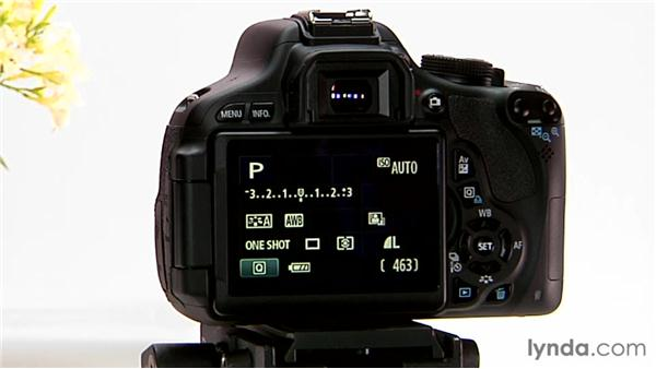 Auto white balance: Shooting with the Canon Rebel T3i (600D and Kiss X5)