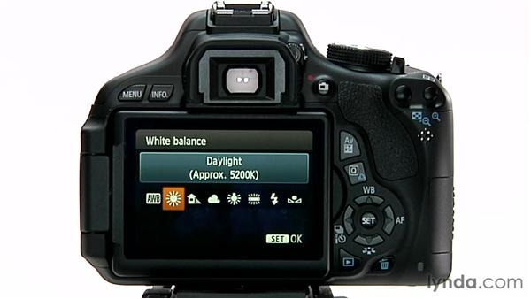 White balance presets: Shooting with the Canon Rebel T3i (600D and Kiss X5)