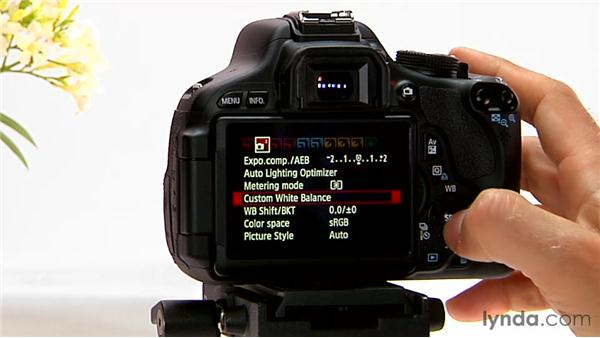 Manual white balance: Shooting with the Canon Rebel T3i (600D and Kiss X5)