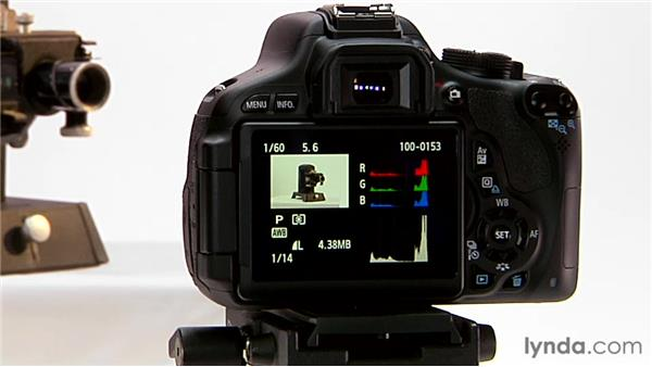 Metadata display: Shooting with the Canon Rebel T3i (600D and Kiss X5)
