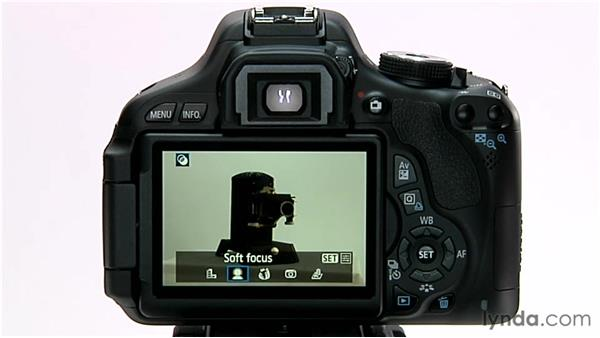 Applying creative filters: Shooting with the Canon Rebel T3i (600D and Kiss X5)