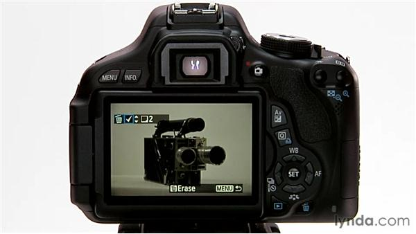 Protecting and deleting images: Shooting with the Canon Rebel T3i (600D and Kiss X5)