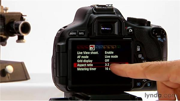 Aspect ratio: Shooting with the Canon Rebel T3i (600D and Kiss X5)