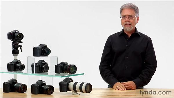 Live view's drawbacks: Shooting with the Canon Rebel T3i (600D and Kiss X5)