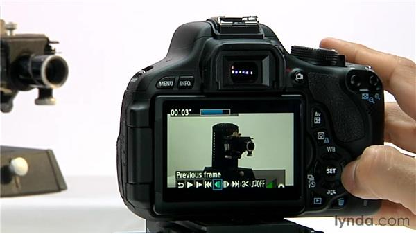 Movie playback: Shooting with the Canon Rebel T3i (600D and Kiss X5)
