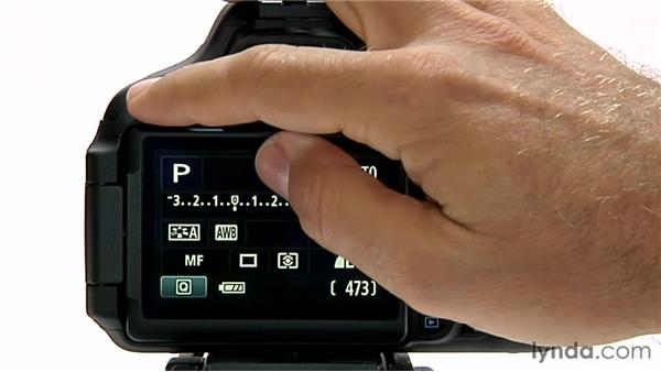Exposure level increments: Shooting with the Canon Rebel T3i (600D and Kiss X5)