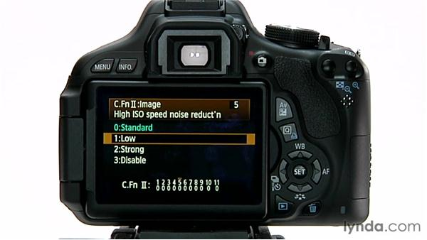 : Shooting with the Canon Rebel T3i (600D and Kiss X5)