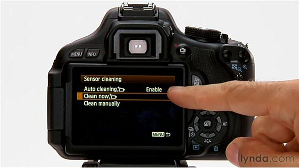 Camera and sensor cleaning: Shooting with the Canon Rebel T3i (600D and Kiss X5)