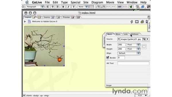 adding images: Learning GoLive 6