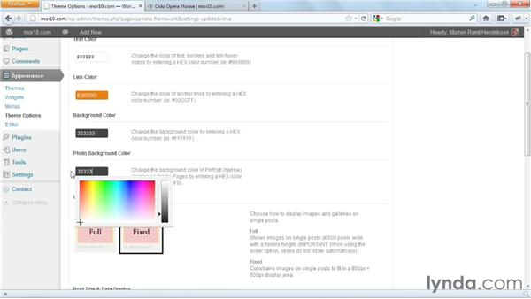 Adjusting AutoFocus 2.0 LITE theme options: Start with a Theme: Photography Portfolios in WordPress