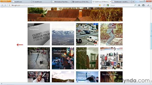 Next steps: Start with a Theme: Photography Portfolios in WordPress