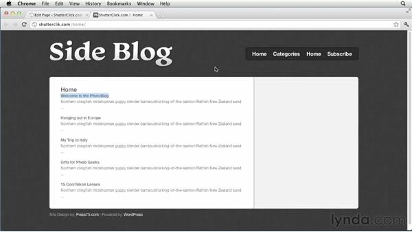 Displaying posts from network sites on the home page: Creating and Managing a Blog Network with WordPress