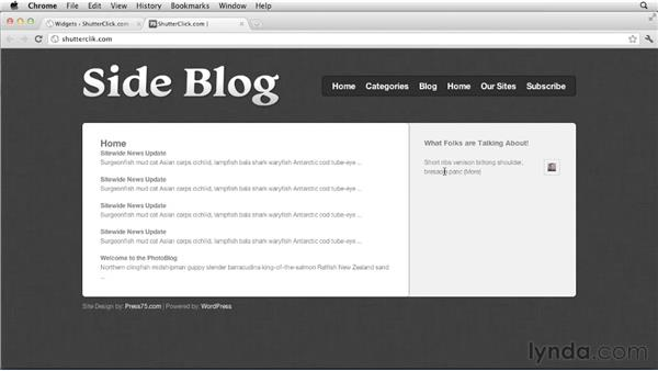 Gathering and using comments network-wide: Creating and Managing a Blog Network with WordPress