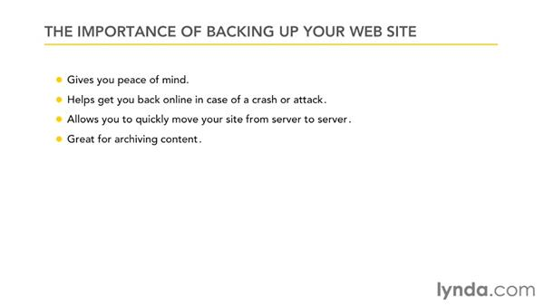 Understanding the importance of backing up your web site: Creating and Managing a Blog Network with WordPress