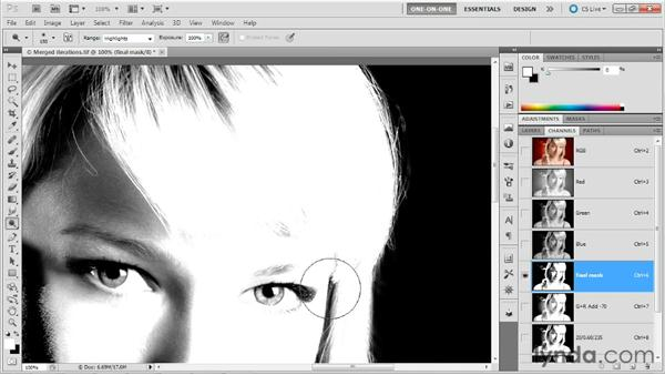 Painting in Airbrush mode: Photoshop Masking and Compositing: Hair