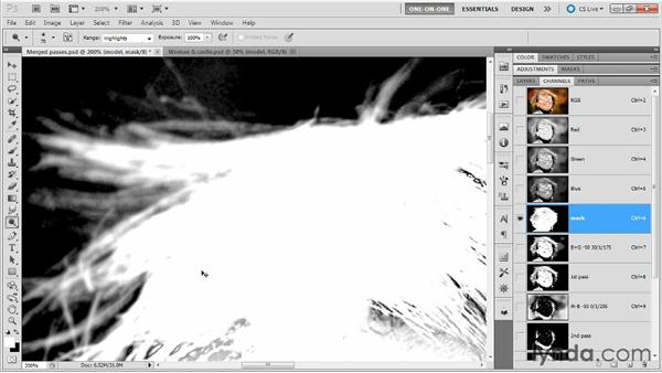 Cleaning up with Dodge and Brush: Photoshop Masking and Compositing: Hair