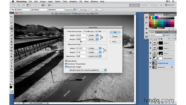 Resizing an image: Foundations of Photography: Composition