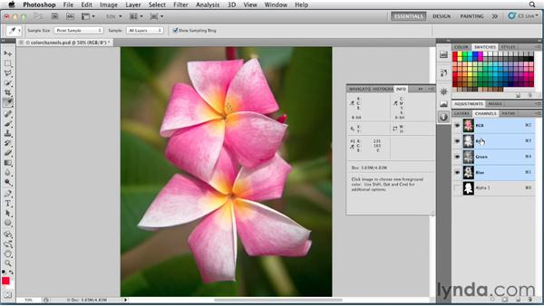 Color channels: Photoshop for Designers: Color