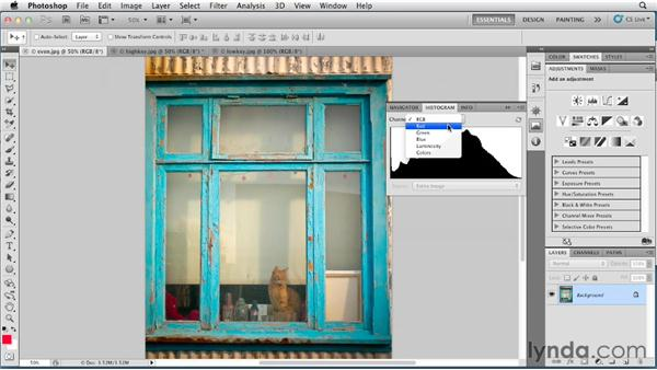 Evaluating color with the Histogram panel: Photoshop for Designers: Color